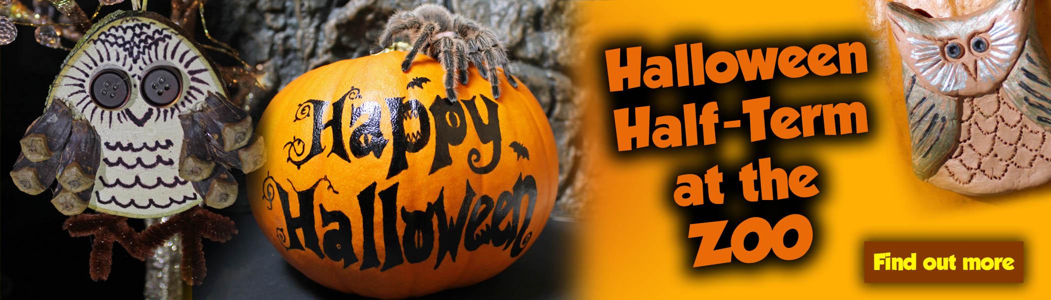 Halloween Half Term