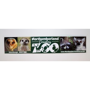 Zoo Car Sticker