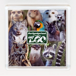 Zoo Photo Magnet